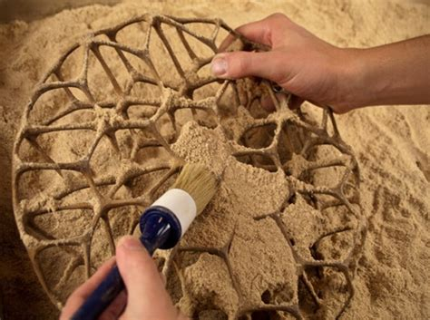 Freedom of Creation 3-D Prints Wood-Like Designs From